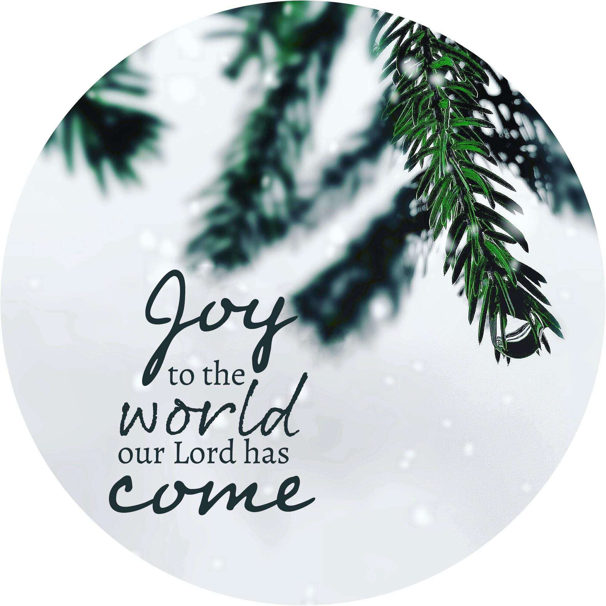 muurcirkel Joy to the world