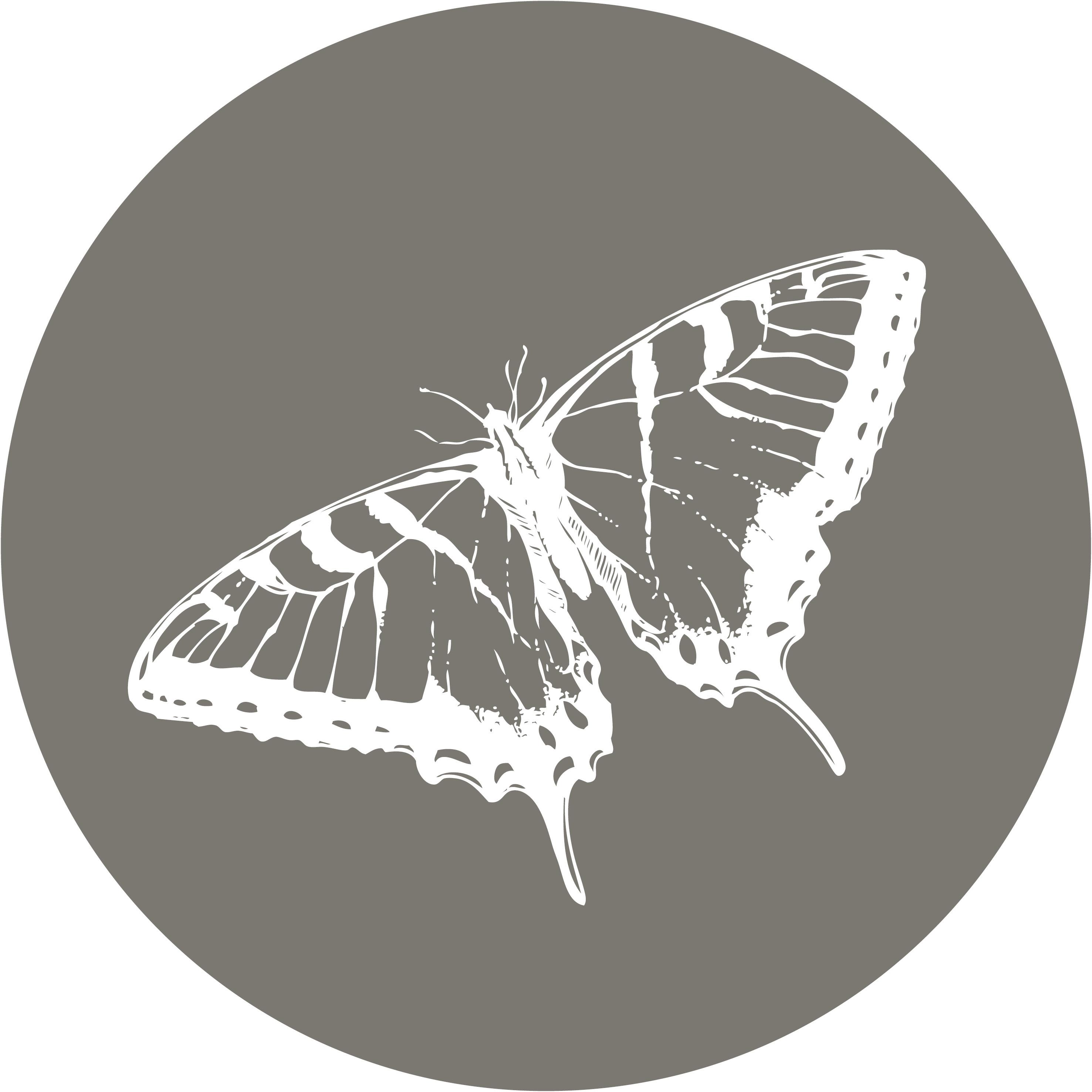 tuincirkel vlinder
